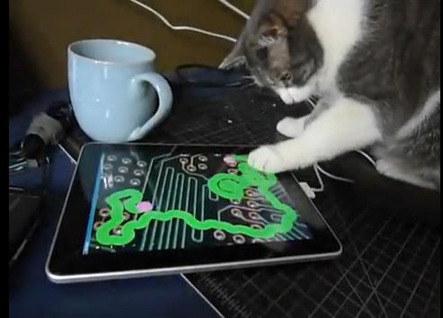 ネコのiPad