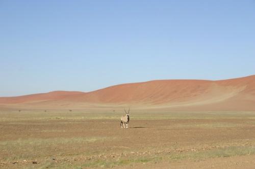 ナミビア09