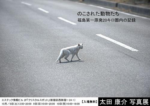 『のこされた動物たち 福島第一原発20キロ圏内の記録』新宿で写真展開催