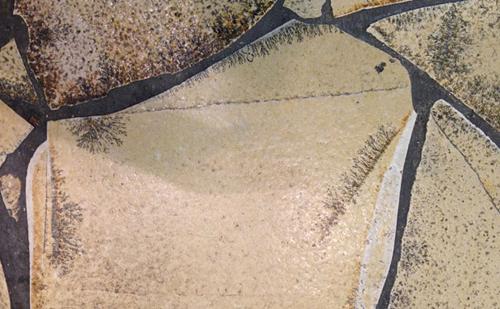 福岡の中心地区 天神は化石だらけ