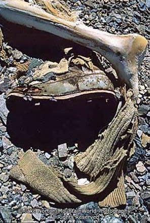 【観閲注意】エベレストに挑んで亡くなった登山家達の遺体