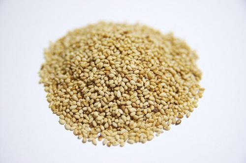 抗酸化作用のある食べ物「ゴマ」