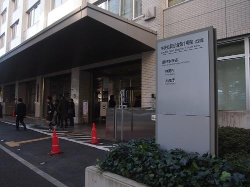 sakura_kujira_02