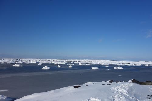宗谷岬の流氷