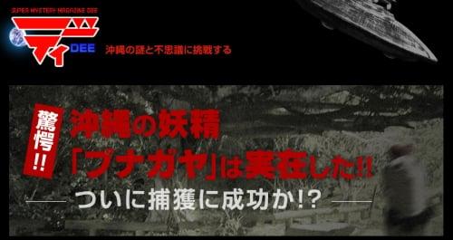 驚愕!! 沖縄の妖精「ブナガヤ」は実在した!! ついに捕獲に成功か!? - ディー 沖縄の謎と不思議に挑戦する_s