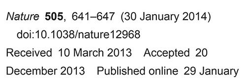 STAP事件簿01 2013年正月