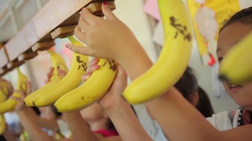 バナナをぶら下げる