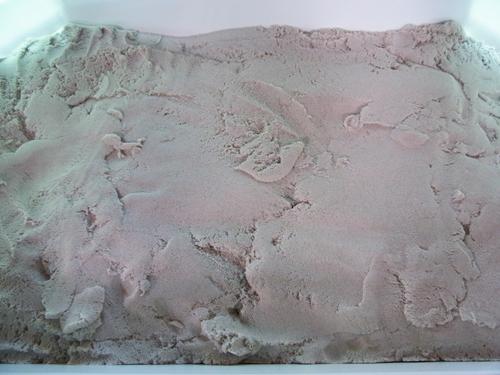 砂のトレー