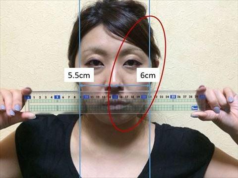 【検証】あの高級ローラーを1万回やり続けるとどれだけ顔が小さくなるのか(ひにログ)