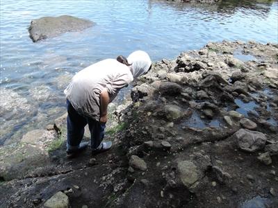 戦時中の軍施設が残る東京湾唯一の無人島「猿島」を徹底レポート!