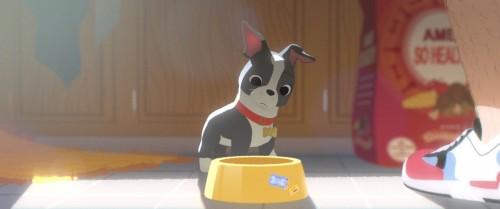 『愛犬とごちそう』特別映像