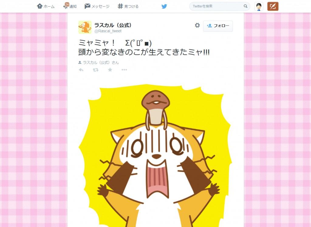 ラスカル(公式)さんはTwitterを使っています- ミャミャ! Σ(゚ロ゚■) 頭から変なきのこが生えてきたミャ!!! http---t.co-UIxHDQVnpy