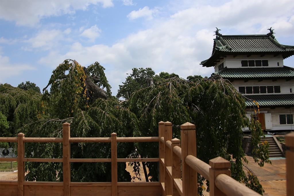 弘前城高台から