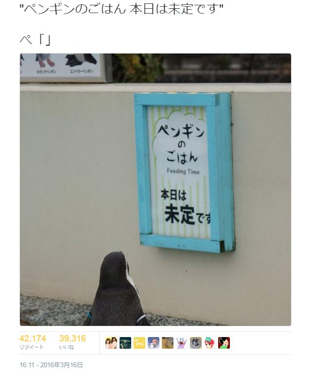 pengin_gohan