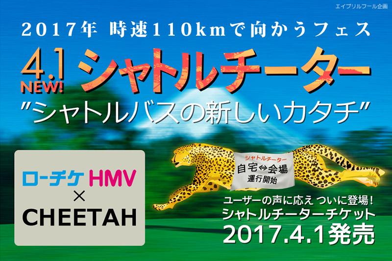 afool_cheetah