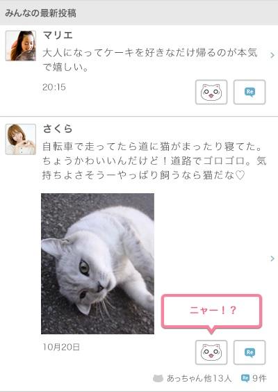 afool_mixi