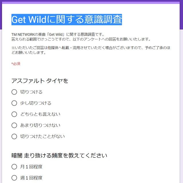 getwild_ank_02