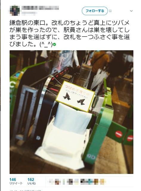 tsubame_kamakura_01
