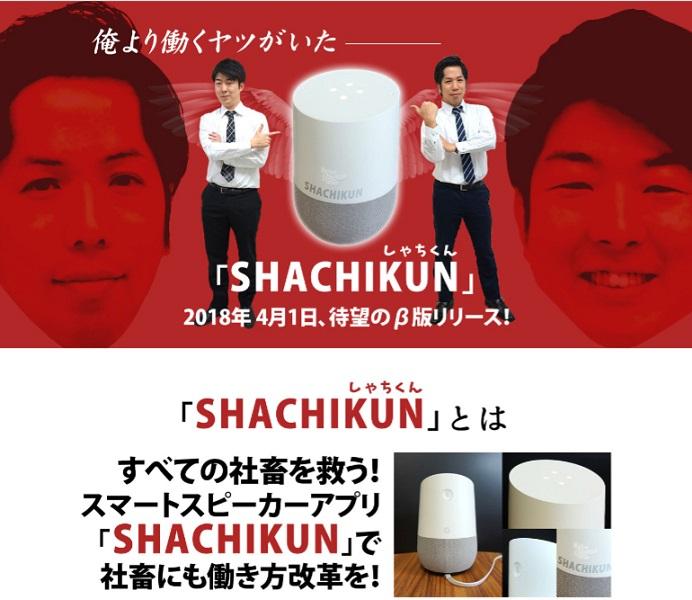 afool_shachikun