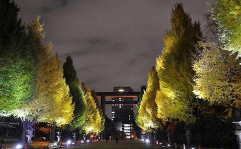千代田いちょうの夕べ 2012