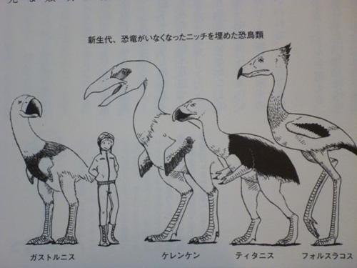 『鳥類学者 無謀にも恐竜を語る』2013年のNo.1でいいでしょ!