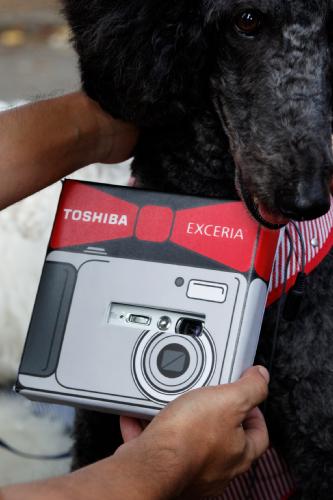 カメラ・ワン専用カメラ