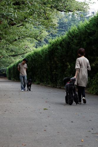 駒沢撮影2