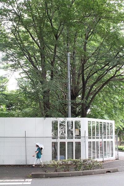 建築予定地は森のように木々が茂っている