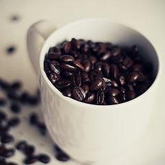 111115coffee01.jpg