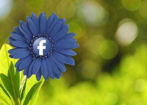 """あなたは大丈夫?Facebookで""""なりすまし""""が急増中!"""