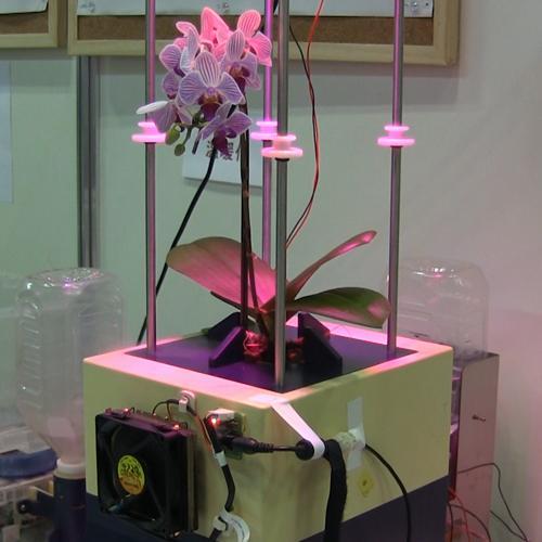 1/10の水で植物を3倍早く収穫 電子霧化水耕栽培システム (有)マジマ研究所