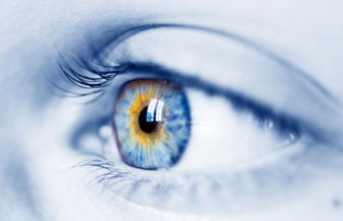 失った視力を取り戻す、光駆動の網膜インプラント【サイエンスニュース】