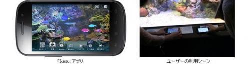 スマホでアクアリウム! サンシャイン水族館でアクアリウムアプリの新サービス