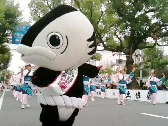 地元・高知の「よさこい祭り」で踊るカツオ人間
