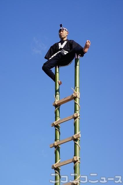 伝統の技「はしご乗り」