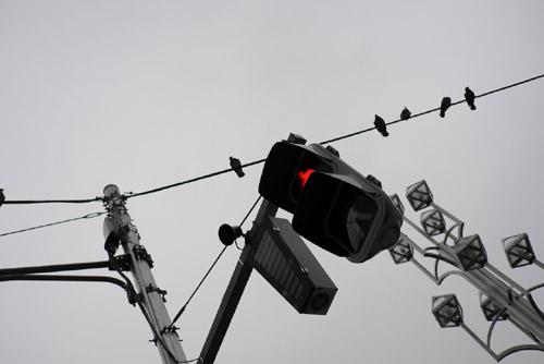 信号samb