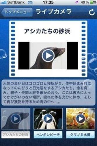 サンシャイン水族館アプリ ライブカメラ