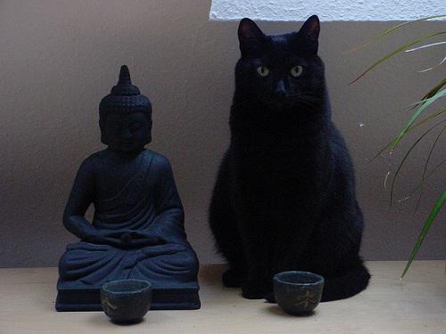 【ライフハッカー[日本版]】不安やストレスを軽減して気持ちが楽になる、どこでもできる簡単な瞑想と呼吸のガイド