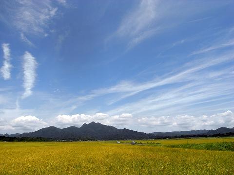 南さつまの風景