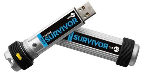 Corsar Flash Survivor