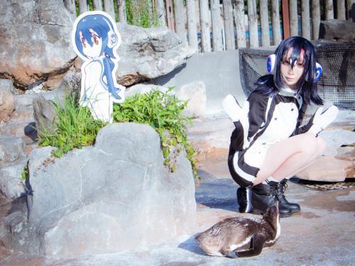 けものフレンズコラボ終了間近! 二次元萌えキャラに恋をしたペンギンのグレープ君はどうなるの!? 東武動物公園に会いに行った!