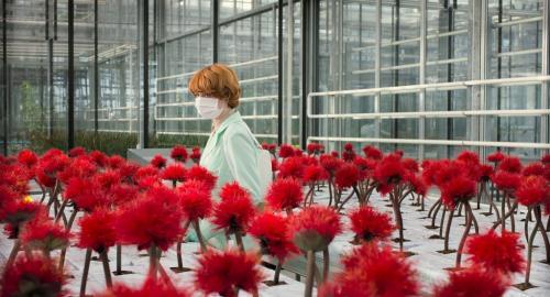 新種の花をめぐるボタニカル・スリラー『リトル・ジョー』が公開延期を発表[ホラー通信]