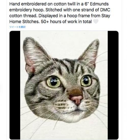 写真でも絵でも無い! この美しいネコさんの正体は? 超絶テクニック動画が話題に