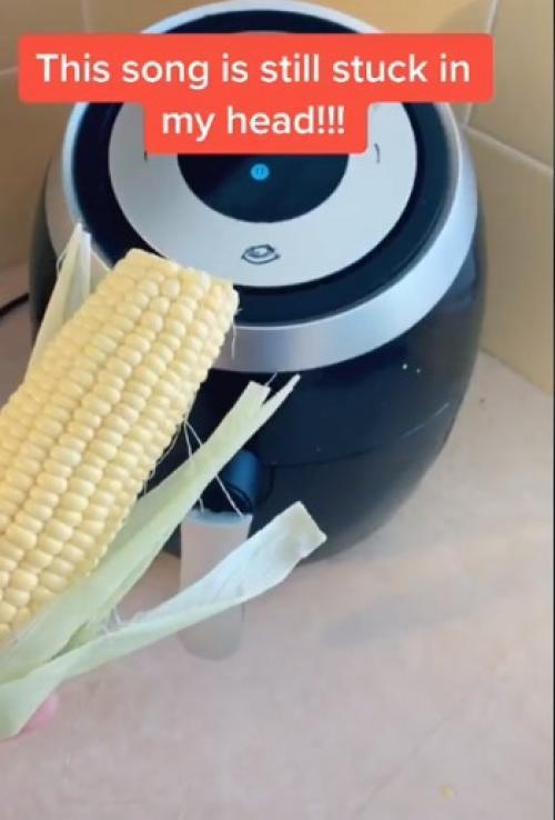 エアフライヤーを使った調理動画ばかり公開しているTikToker このポップコーンは食べてみたい