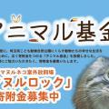 「マヌルネコ達を本来の生活環境に」こども動物自然公園が施設整備のための寄付金を募集中