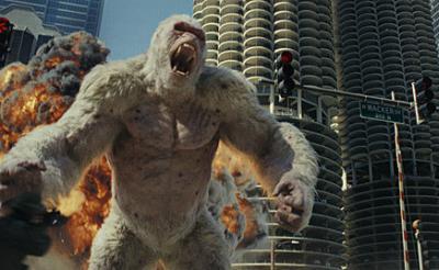 コラム:映画『ランペイジ 巨獣大乱闘』の白いゴリラは実在する? 地球の歴史上最大の動物とは?(動物行動学者・新宅広二)