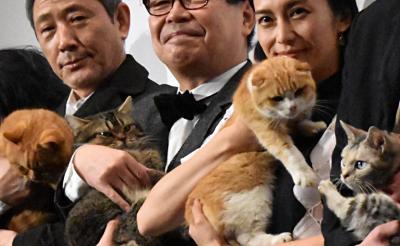 にゃんこ7匹が登壇!映画『ねことじいちゃん』初日舞台挨拶「岩合監督は猫のことばっかり」とキャスト明かす