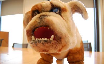 映画『Diner ダイナー』の可愛すぎる?!狂犬・菊千代さんに会ってきた「がるるるる……(観なきゃ噛みつくぞ)」
