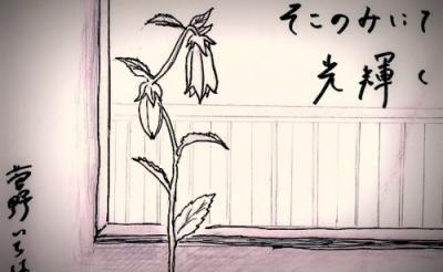 """無数の""""諦め""""を描きながら不思議と勇気付けられる『そこのみにて光輝く』【菅野いちはの映画レビュー】"""