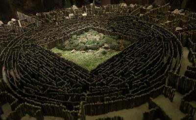 【独占動画】映画『メイズ・ランナー』巨大迷路の攻略法大公開! 現実世界でも使えちゃう?